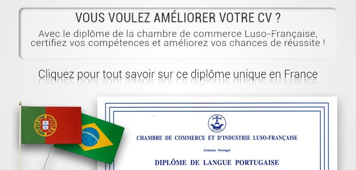 Cours de portugais lyon ilcp - Chambre de commerce et d industrie lyon ...