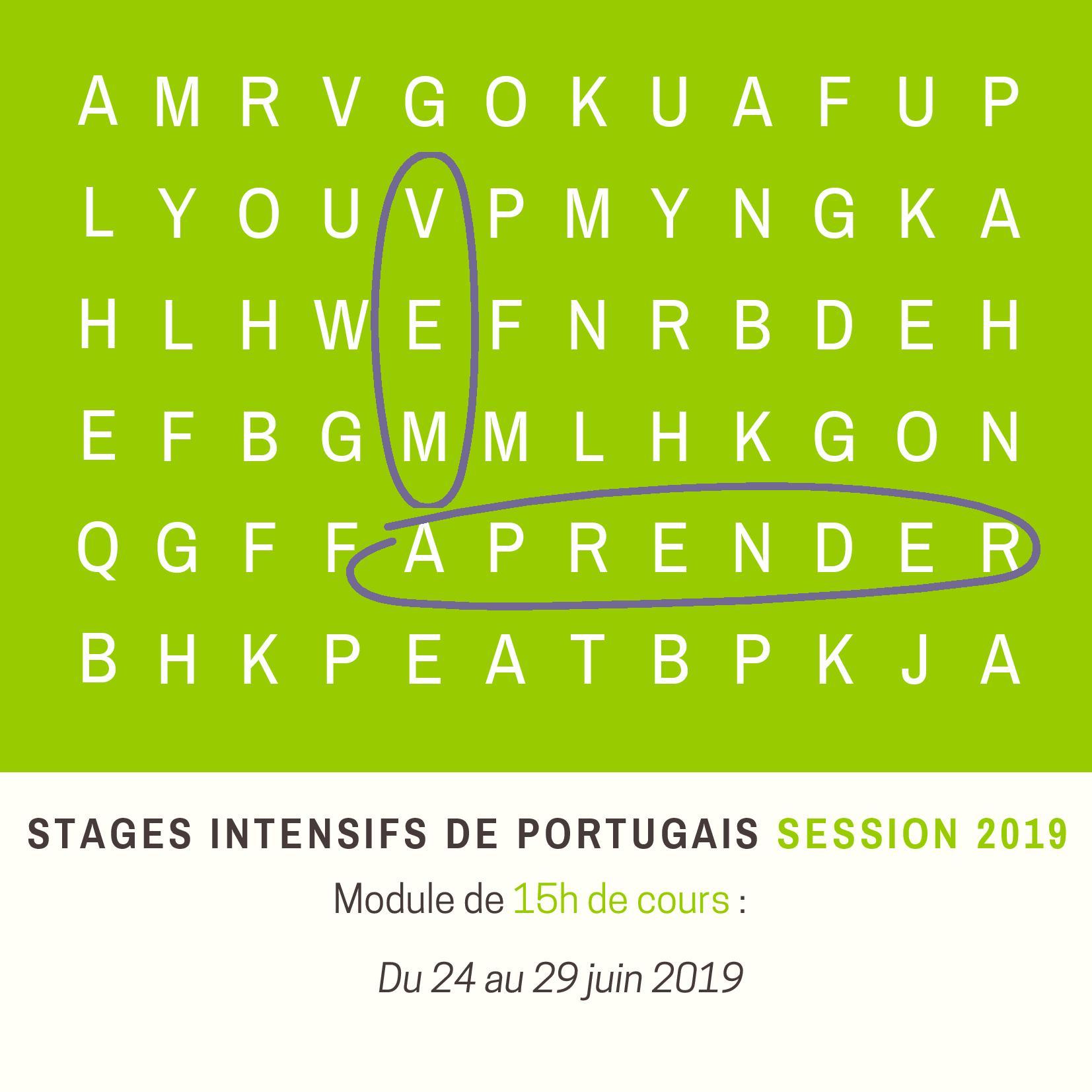 Stage intensif portugais lyon